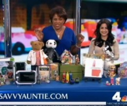 "Holiday Gifts with the ""Savvy Auntie"" WNBC Weekend Today in NY"